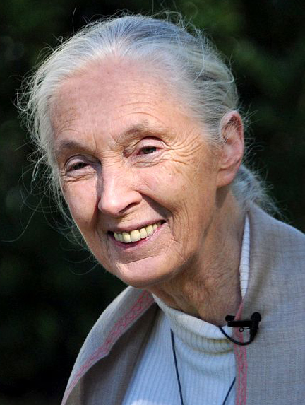 Jane Goodall Institute - Wikipedia, the free encyclopedia