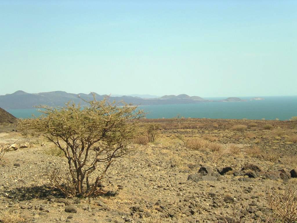 Lake_turkana.jpg (1024×768)