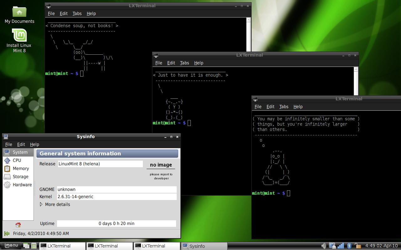 Beskrivning linux mint 8 lxde terminals info