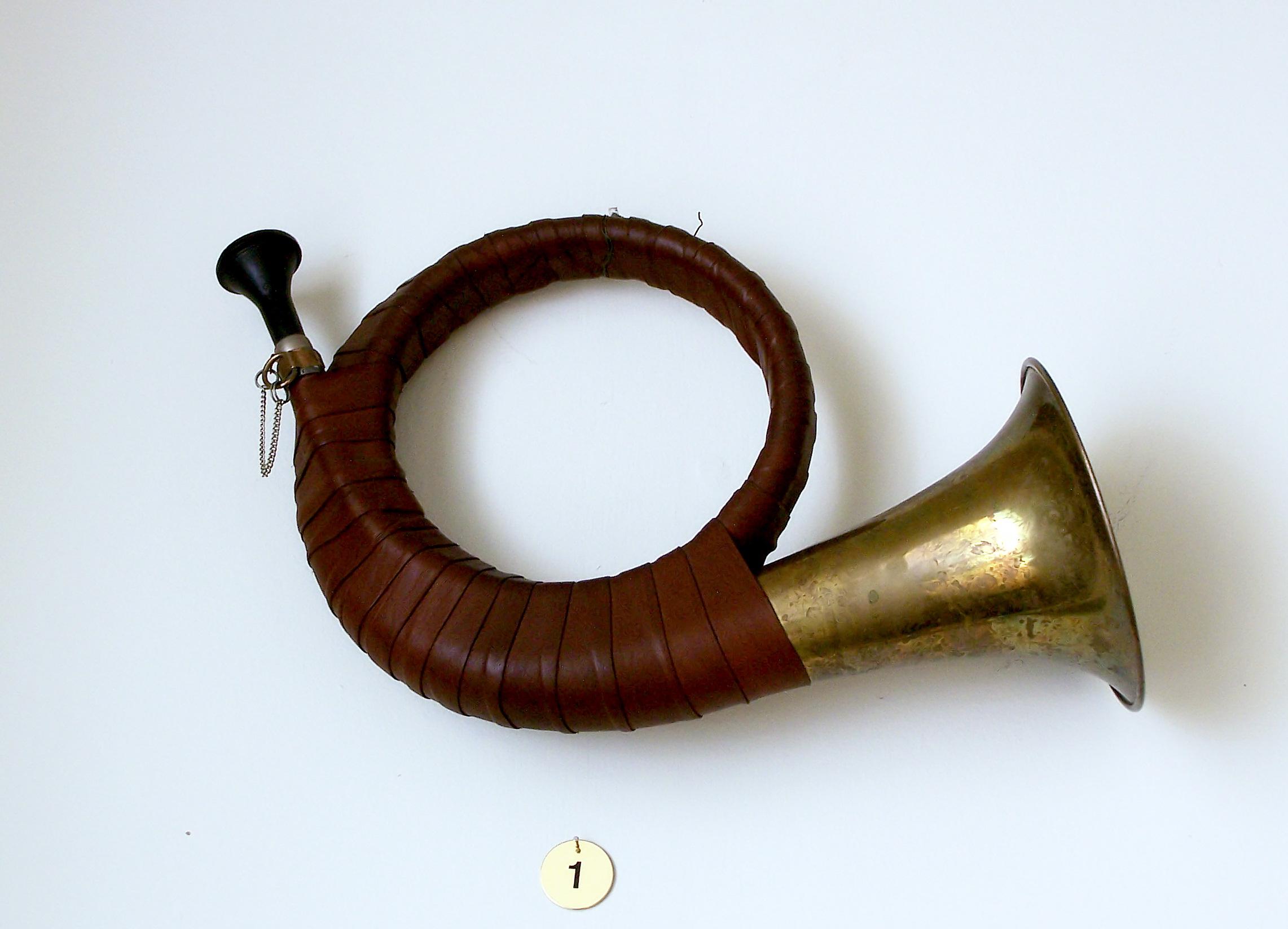 F U00fcrst-pless-horn