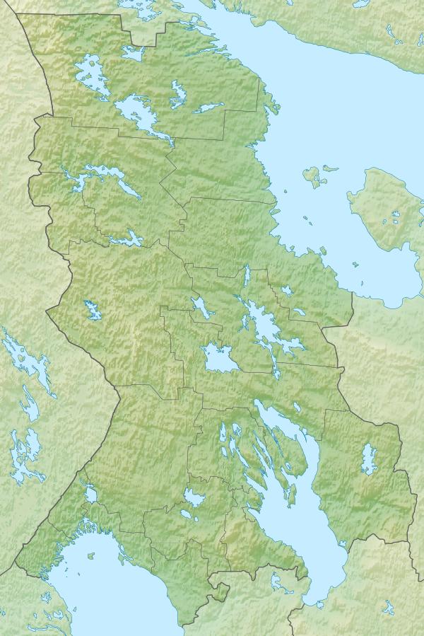 Мандрика (приток Выга)
