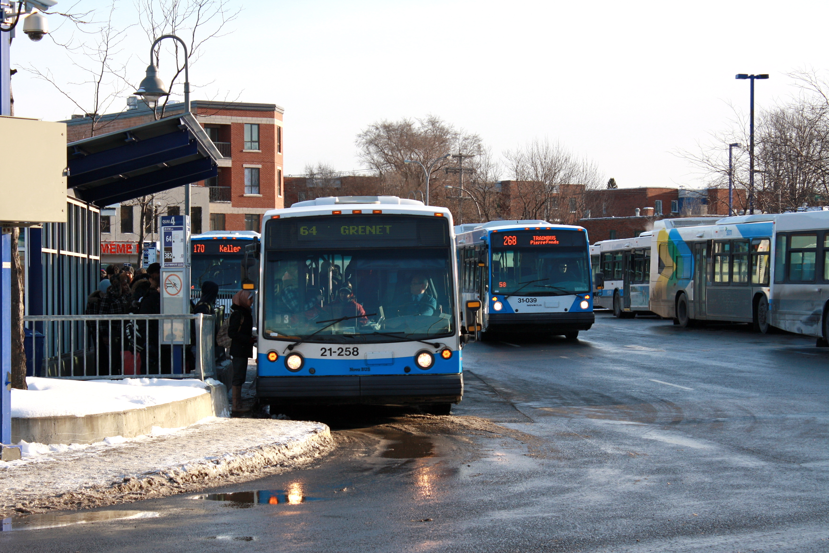 Stm Buses Montreal West Island