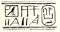Drawing of hieroglyphs organised in columns