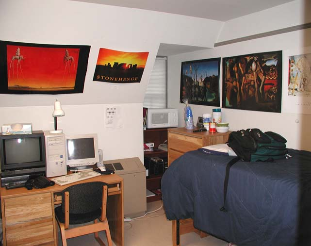 College Dorm Room Color Ideas