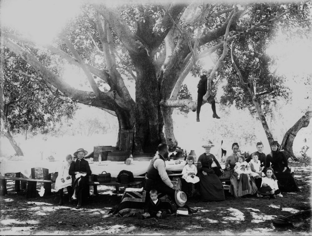 File Statelibqld 2 202647 Family Picnic Around A Large