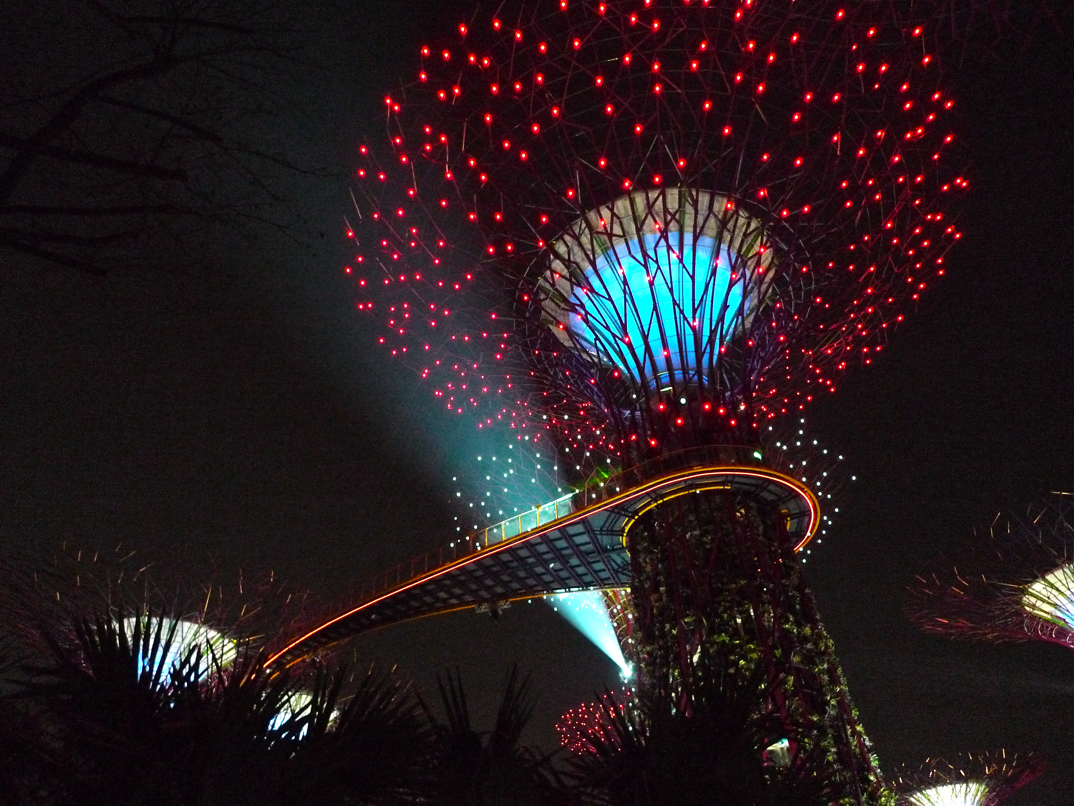 File:Supertree Grove, Gardens By The Bay, Singapore   20120630 03.
