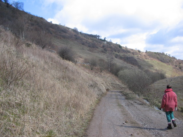 The old road down Coombs Dale - geograph.org.uk - 148940