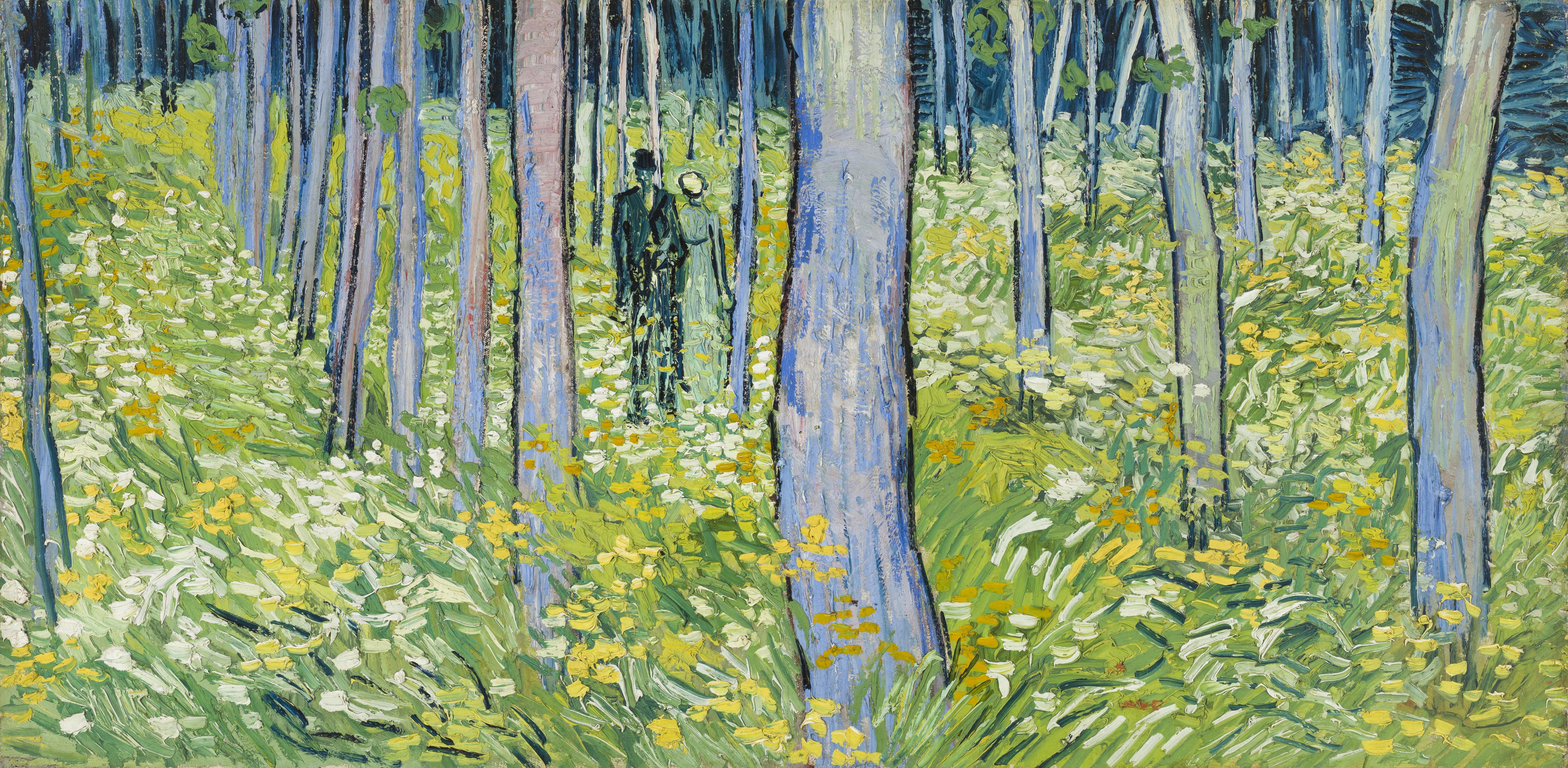 Fichier:Vincent van Gogh - Undergrowth with