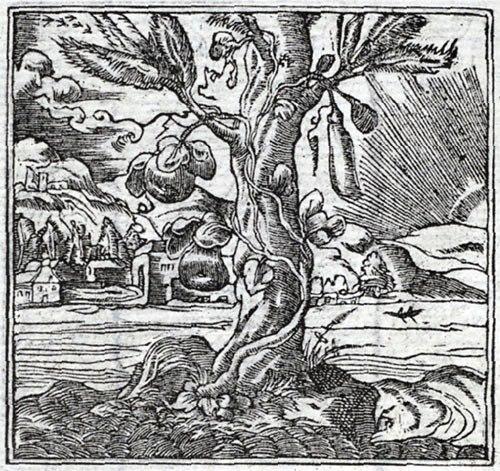 File:Alciato 1550.jpg