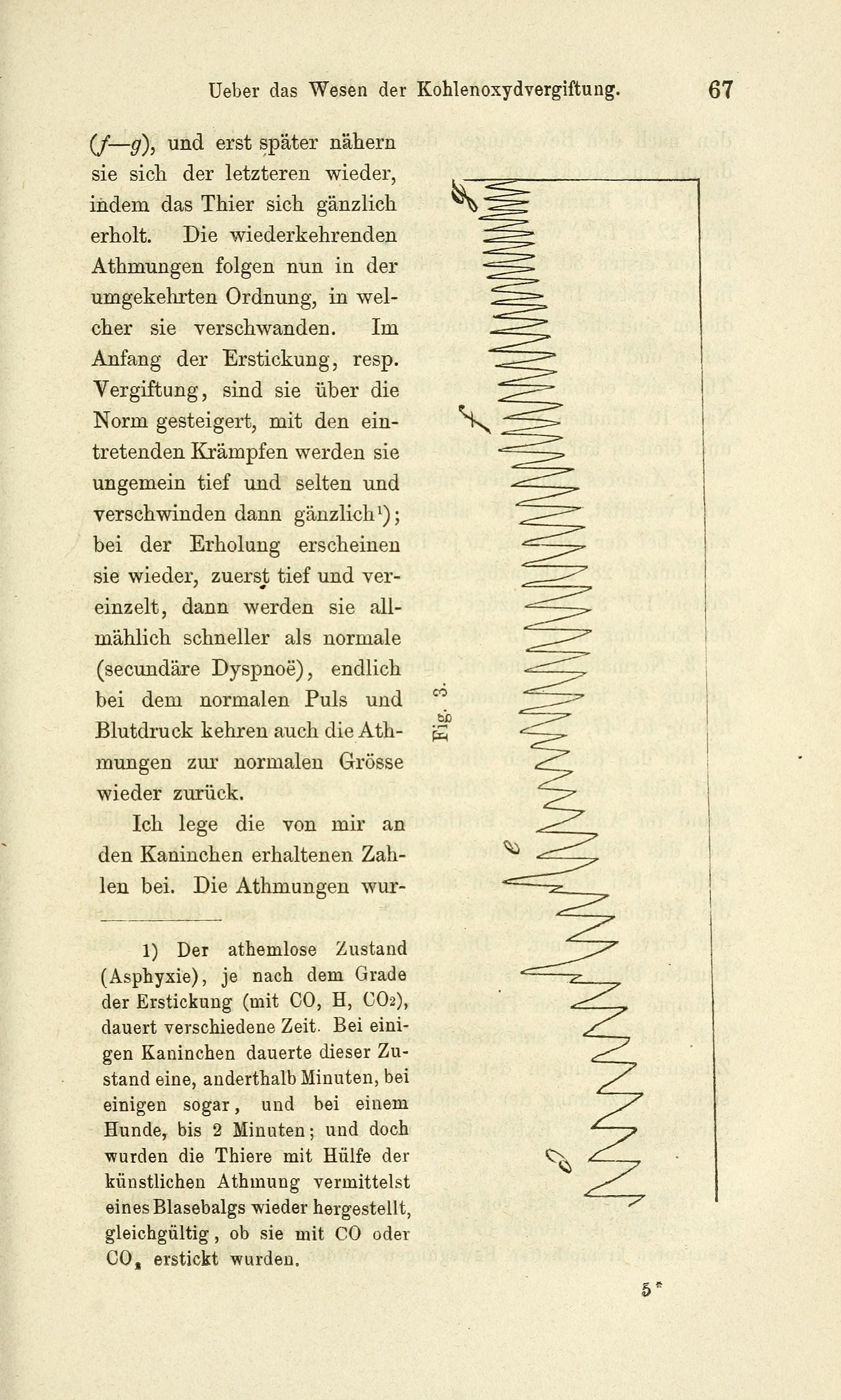 Tolle Hilfe Bei Der Anatomie Und Physiologie Galerie - Menschliche ...