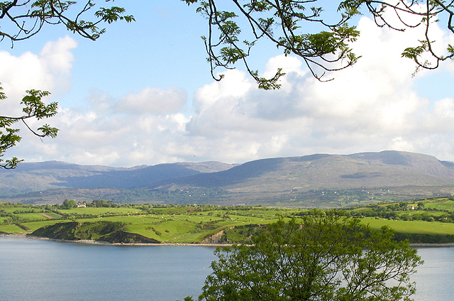 Whiddy Island viewed from the south shore of Bantry Bay, Ireland. Photo by Pam Brophy.