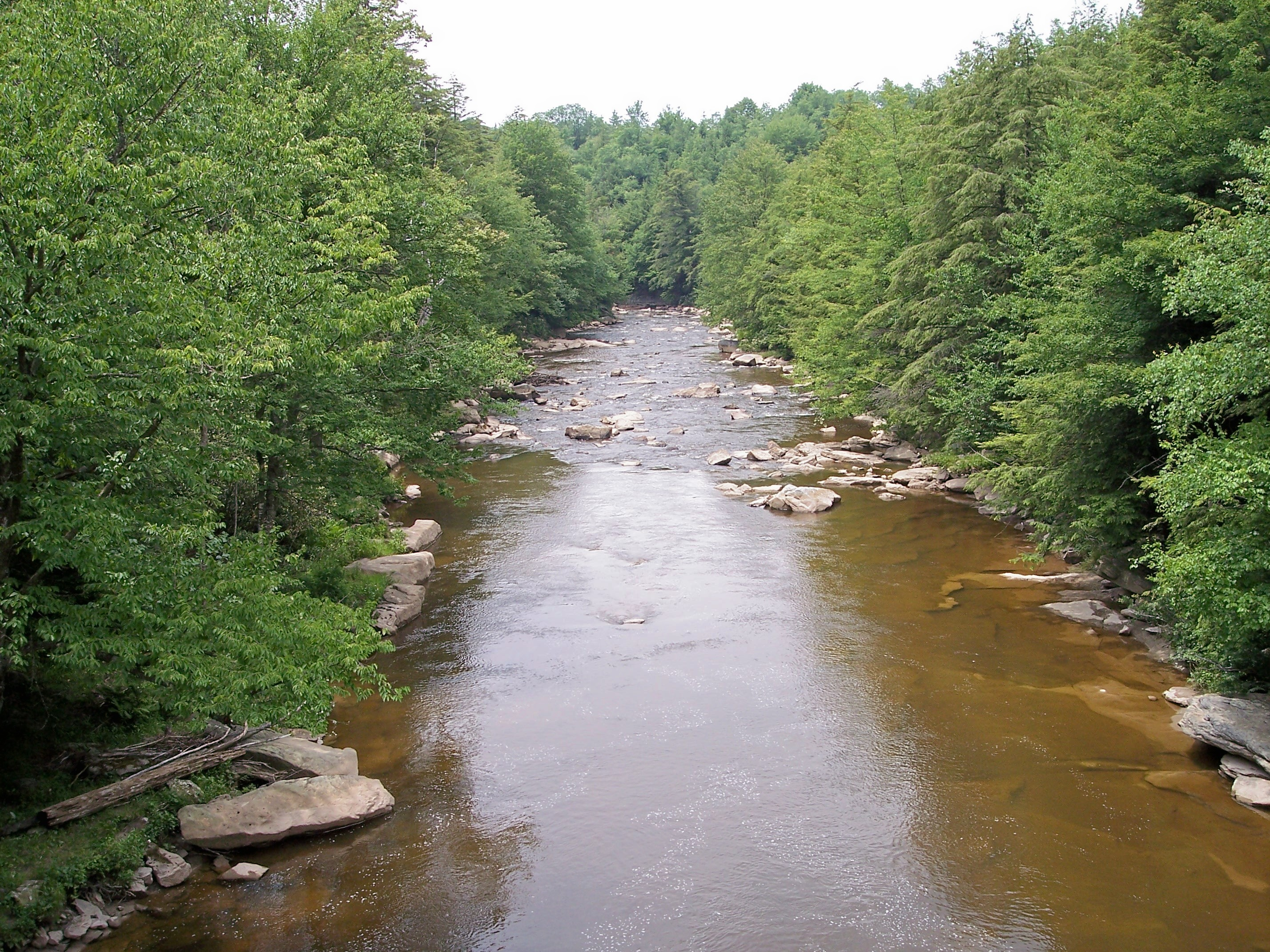 River Falls Virginia River Blackwater Falls