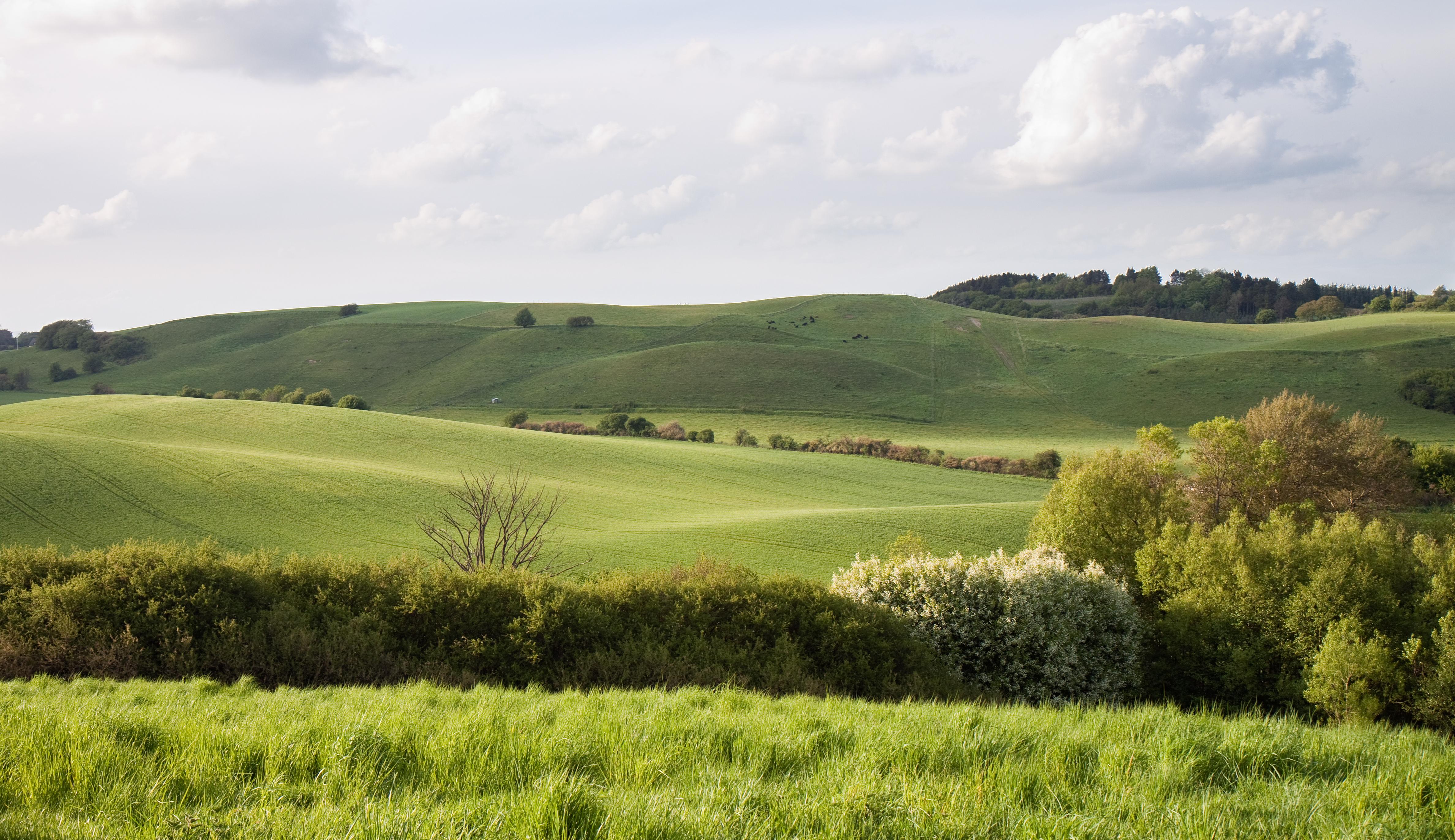 file brorfelde landscape     wikimedia commons