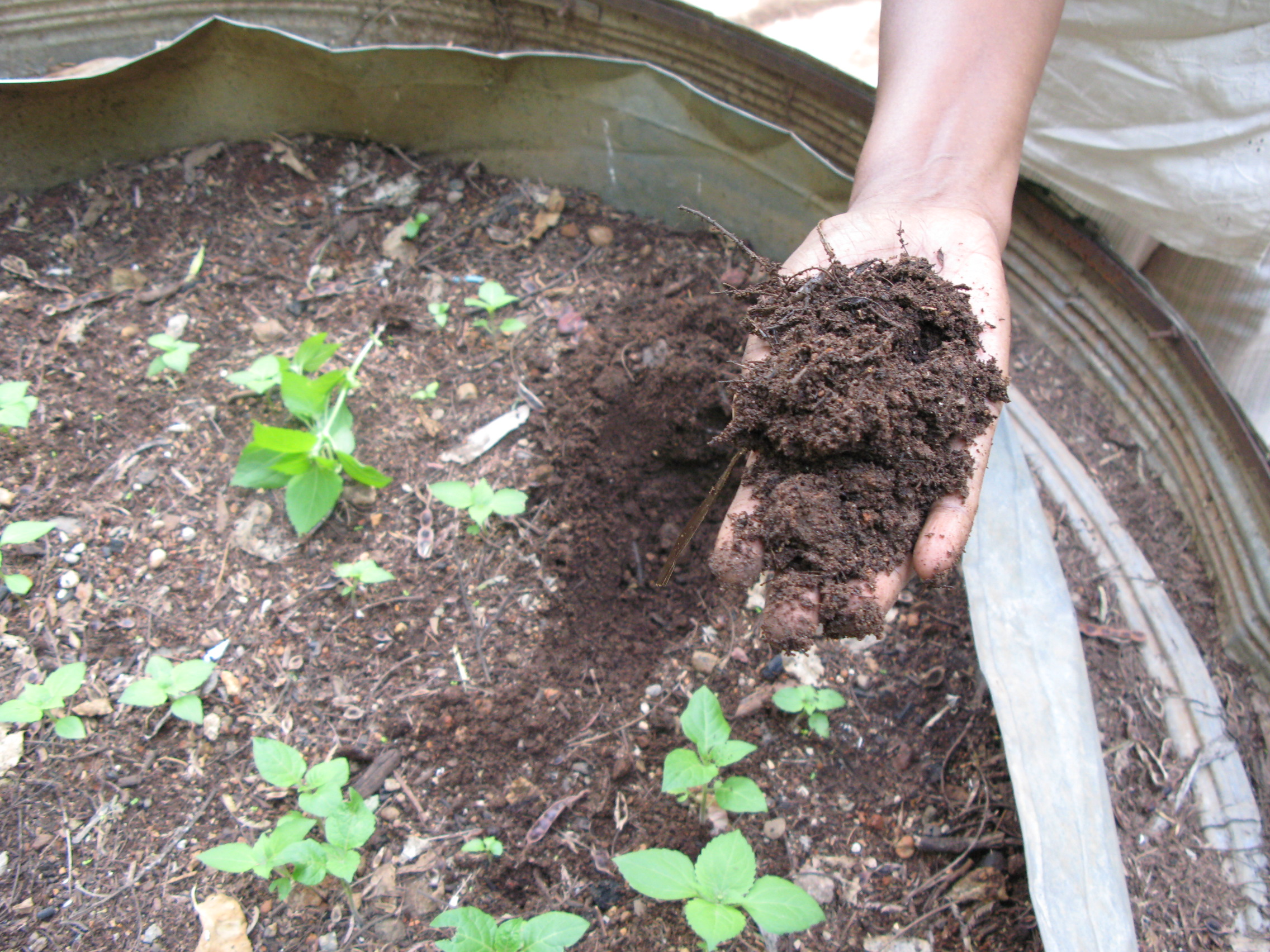 Great ways to make your home environmentally friendly for Topsoil garden soil