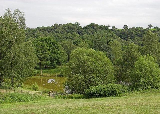 Consall Nature Park - geograph.org.uk - 191897