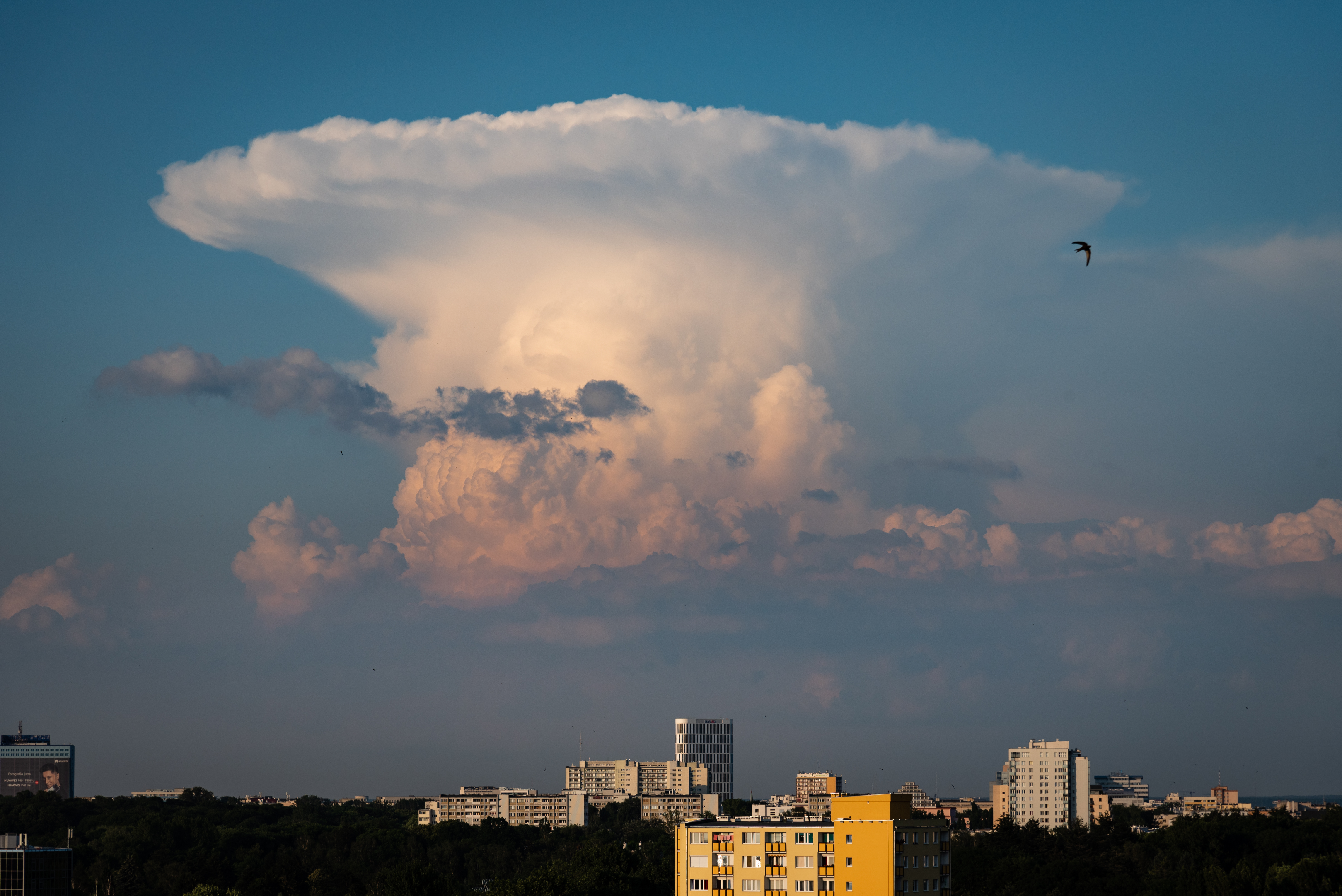 File:Cumulonimbus incus over Warsaw, Poland.jpg ...