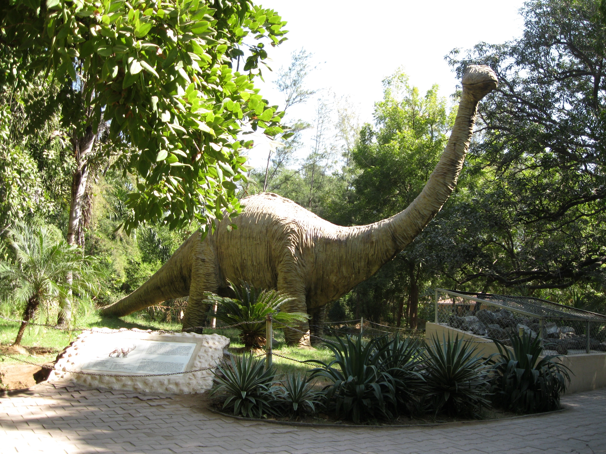 Indroda Dinosaur And Fossil Park From Wikipedia