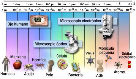 File:Escala Nanometrica.jpg - Wikimedia Commons