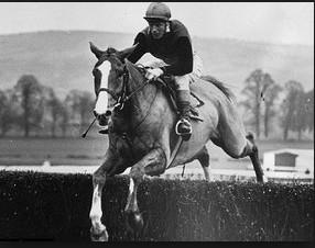 Flyingbolt British-bred Thoroughbred racehorse