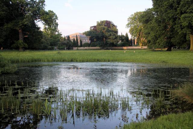 Ickworth pond - geograph.org.uk - 832130