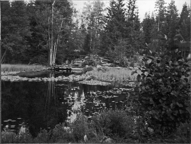 Andreasson - Offentliga medlemsfoton och - Ancestry