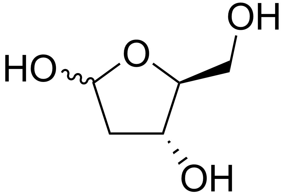 The previous product:2-deoxy-l-ribose