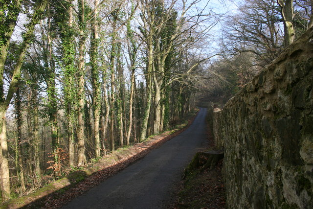 Lane above Chudleigh - geograph.org.uk - 682929