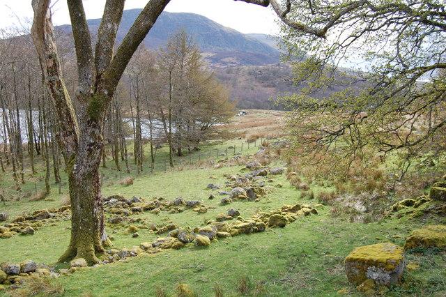 Llanycil - Woodland by Llyn Celyn with Arenig Fawr - geograph.org.uk - 1612340