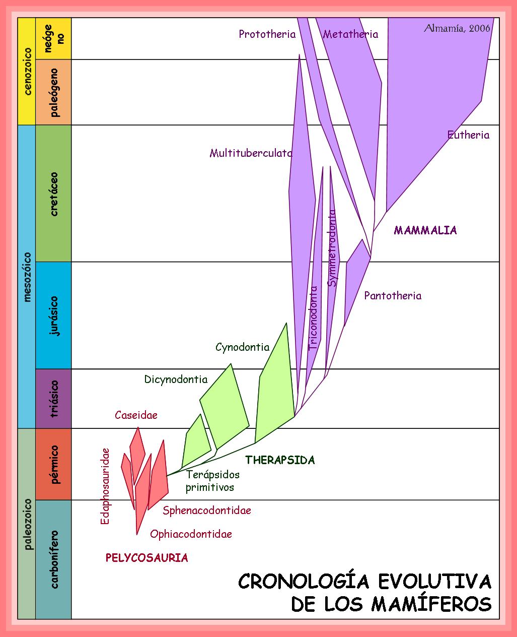 Evolución de los mamíferos - Wikipedia, la enciclopedia libre
