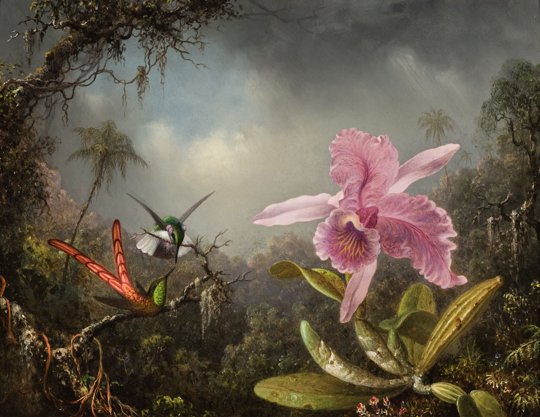Orchid_with_Two_Hummingbirds_1871.jpeg