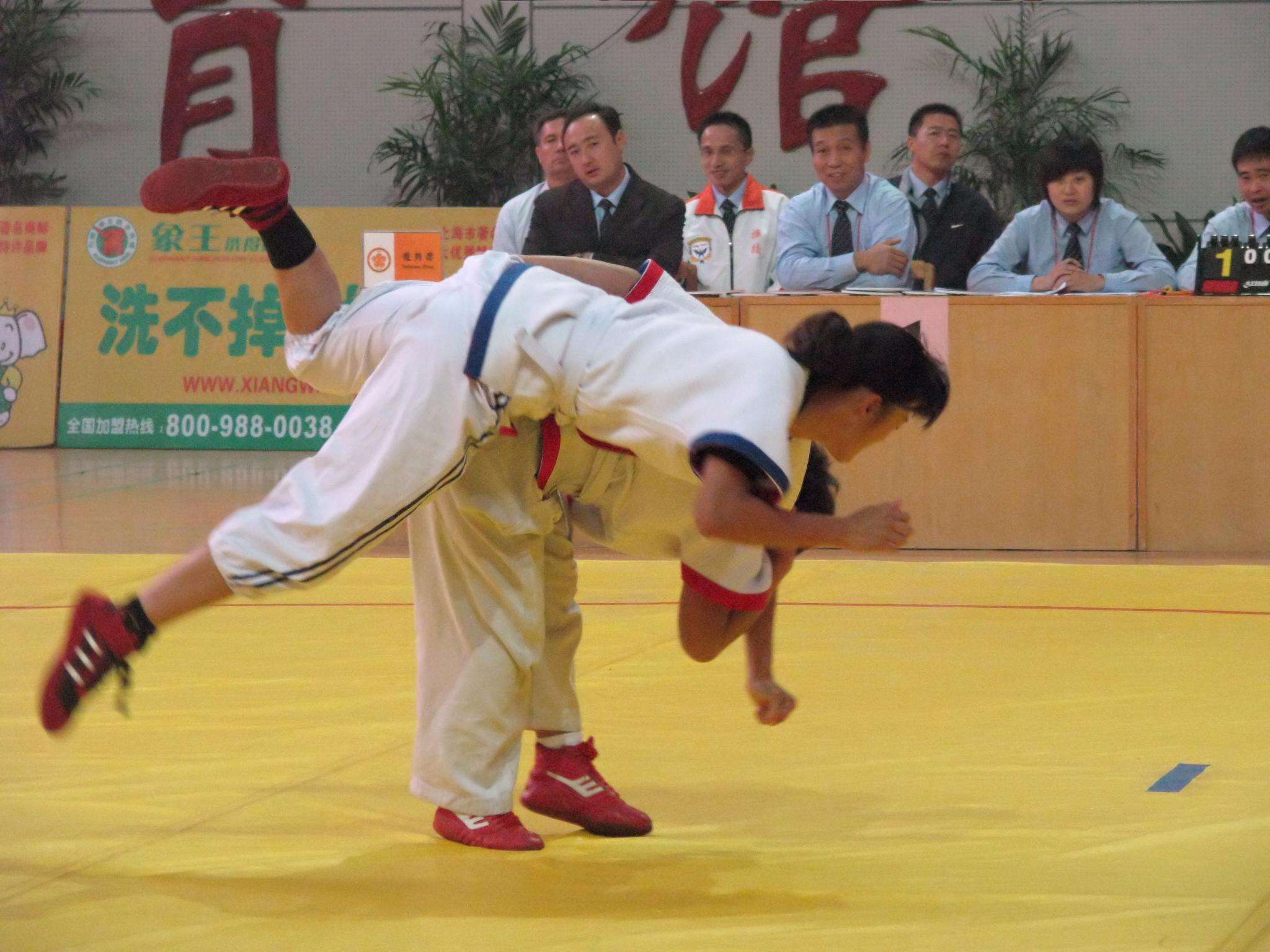 Image result for shuai jiao imagenes
