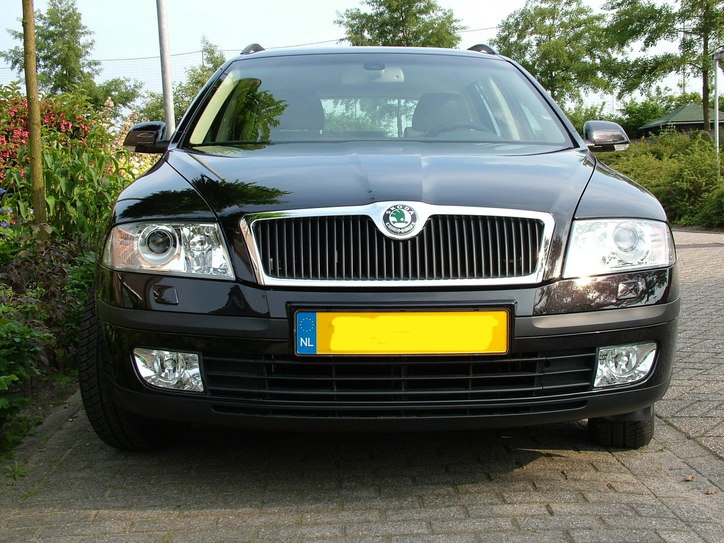 https://upload.wikimedia.org/wikipedia/commons/8/85/Skoda_Octavia_II_front.jpg