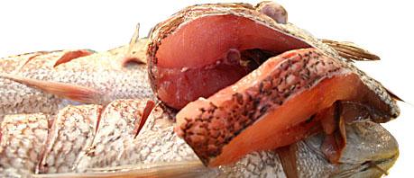 File:Slices of fish.jpg