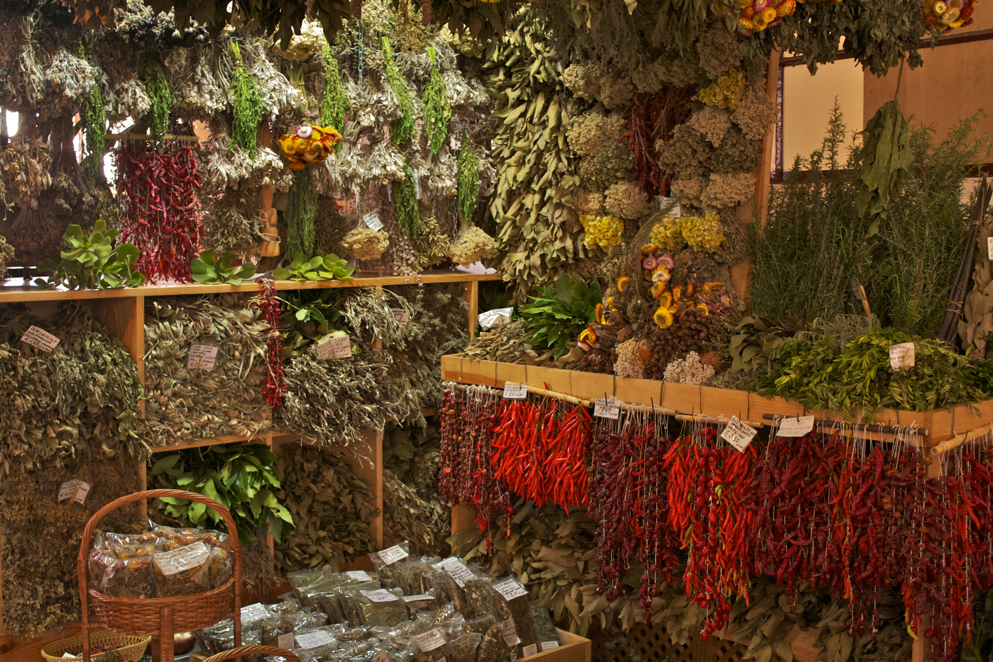 File spices herbs at mercado dos lavradores funchal nov wikimedia commons - Medicinal herbs harvest august dry store ...