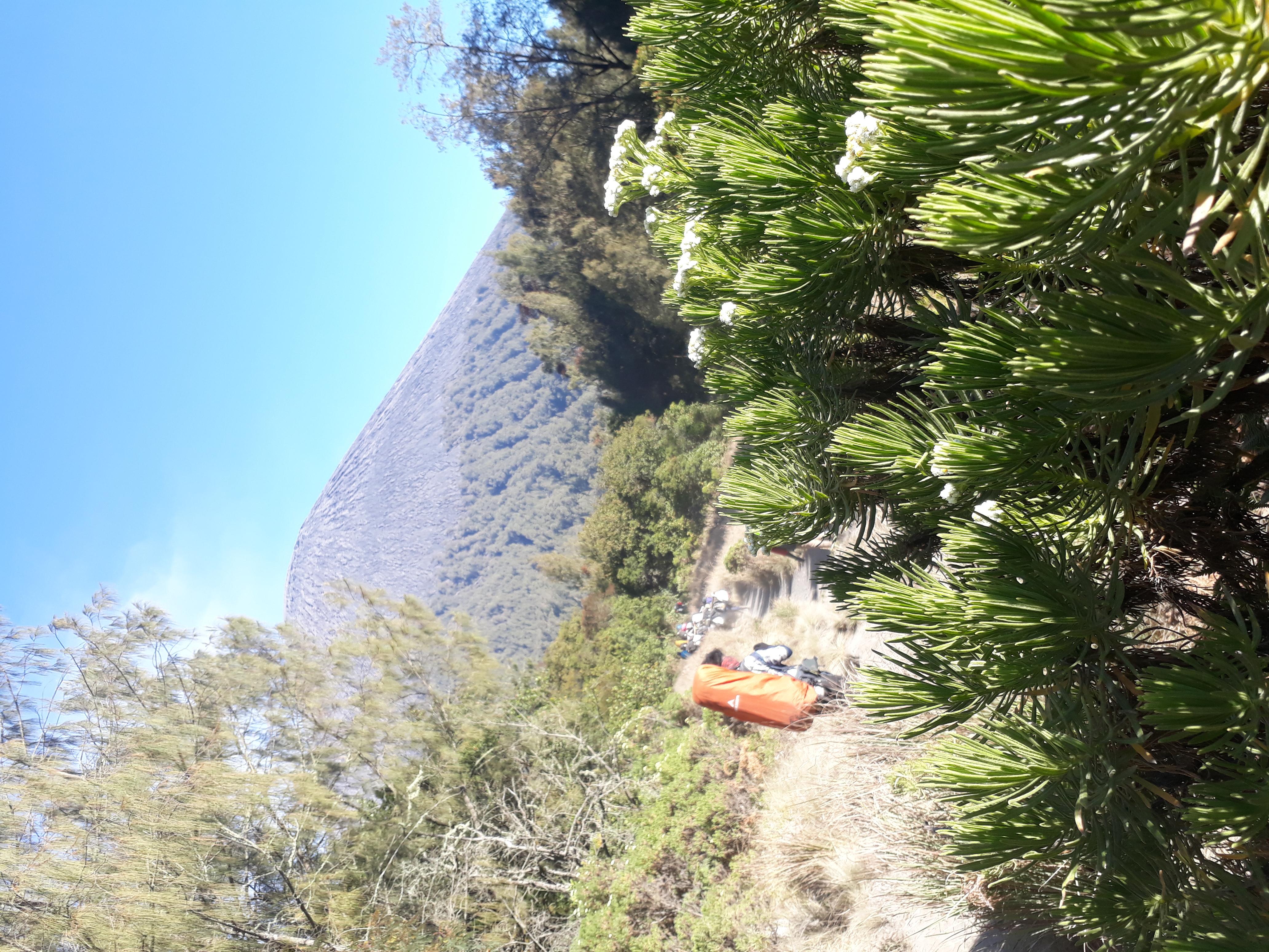 File:Taman nasional bromo tengger semeru.jpg