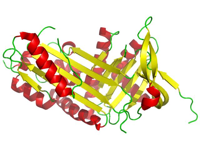 corticosteroid binding globulin test