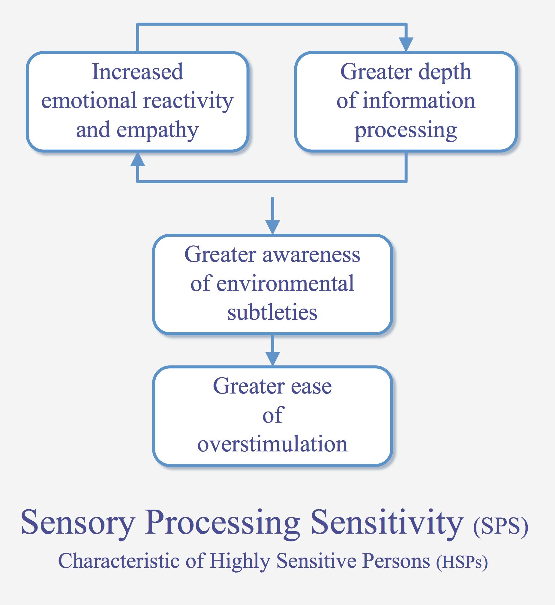 Sensory processing sensitivity - Wikipedia