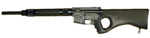 [Image: AR-15_w_thumbhole_stock.jpg]