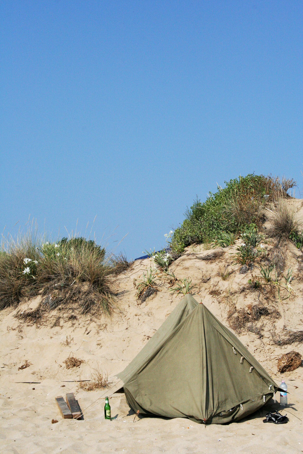 FileA tent on the beach (492568899).jpg & File:A tent on the beach (492568899).jpg - Wikimedia Commons