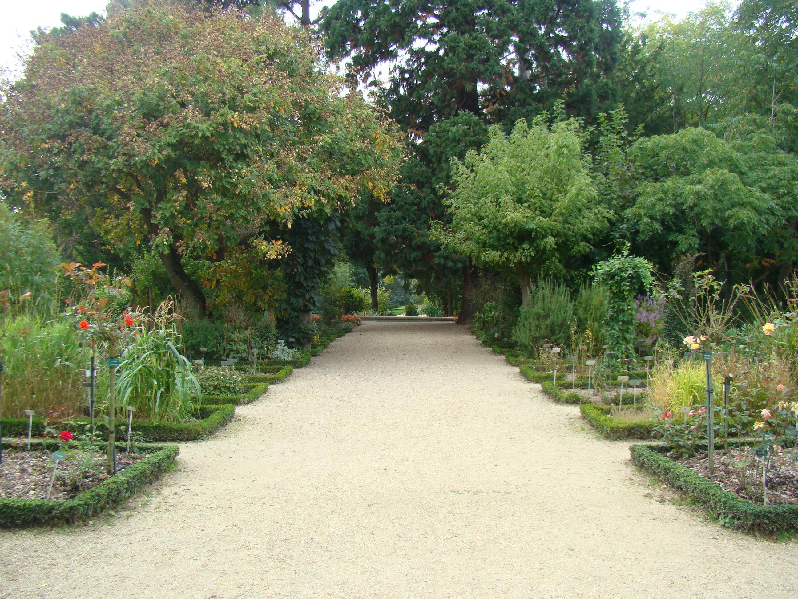 File:Allée Jardin botanique.JPG - Wikimedia Commons
