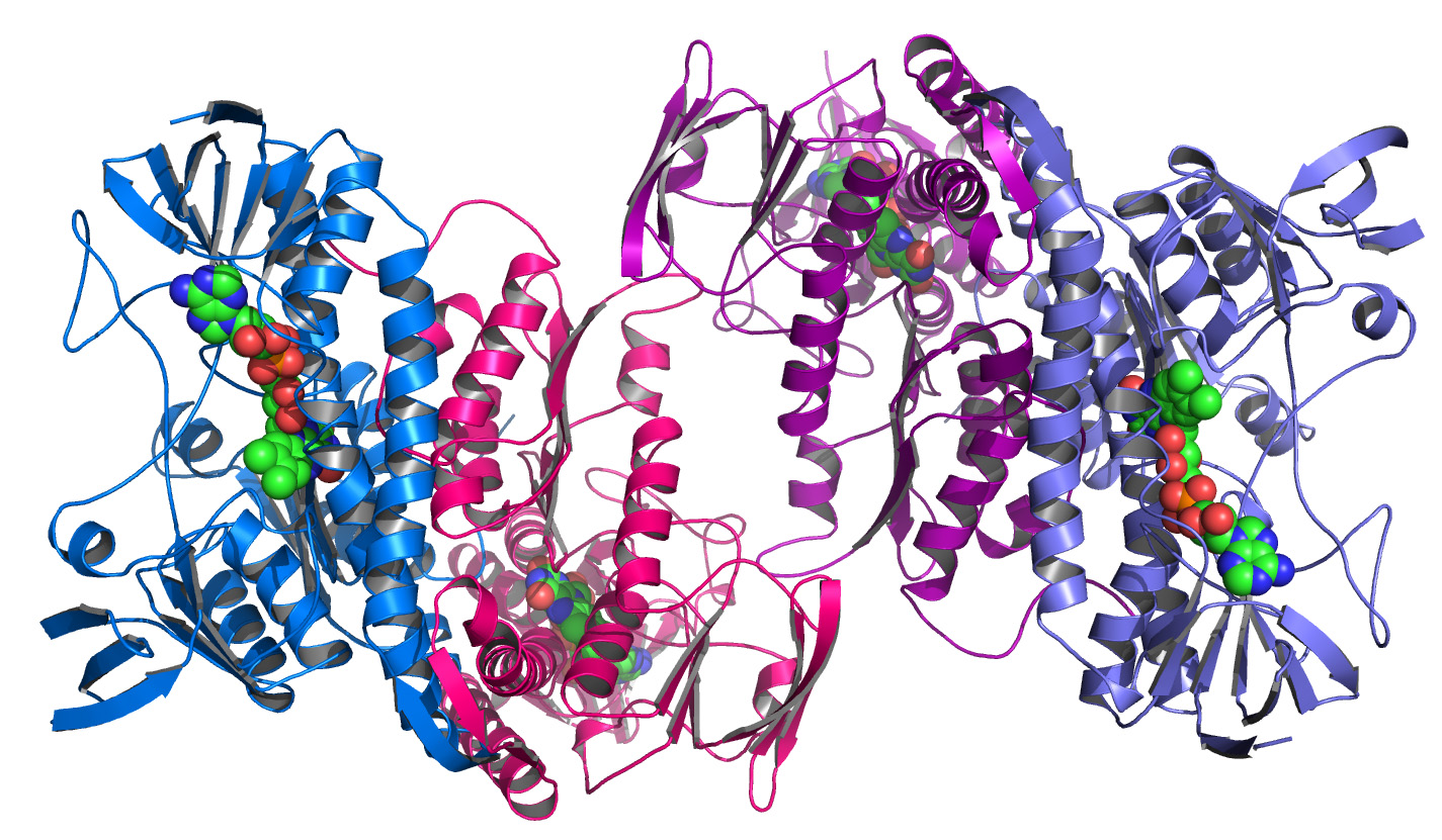 Protein structure - pretty but dull