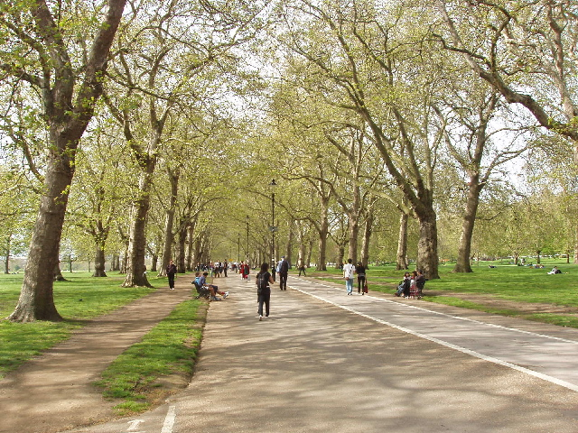 File:Broad Walk in Hyde Park, by Park Lane - geograph.org.uk - 788977.jpg
