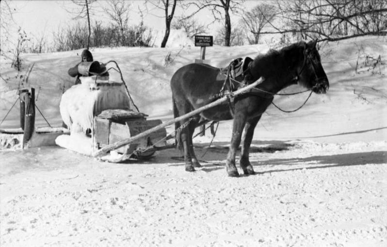 File:Bundesarchiv Bild 101I-287-0872-21, Russland (bei Orel), Pferdegespann.jpg