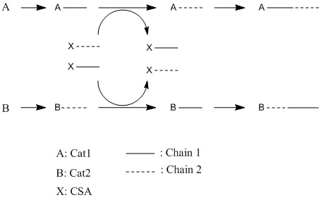 Reaction scheme for chain shuttling polymerization