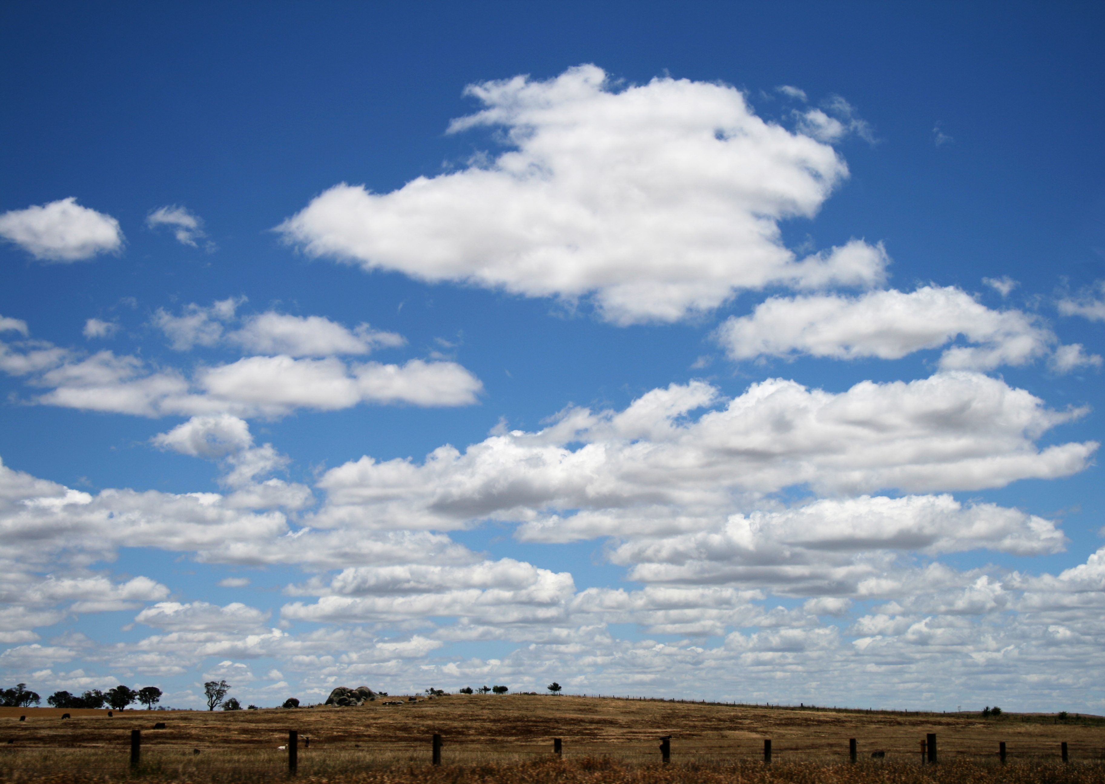 File Cumulus Humilis Clouds Jpg Wikimedia Commons