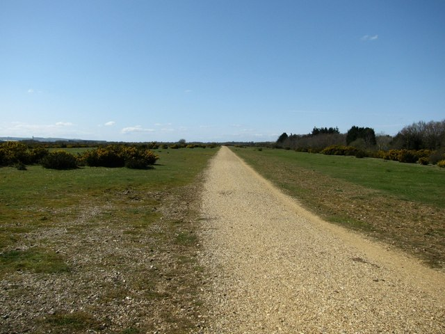 File:Cycle Track, Greenham Common - geograph.org.uk - 1471049.jpg