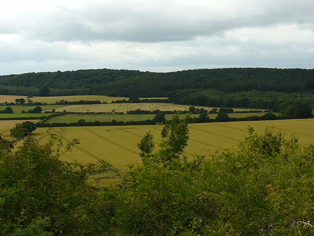 Farmland between Oversley Wood and Grove Hill - geograph.org.uk - 888984