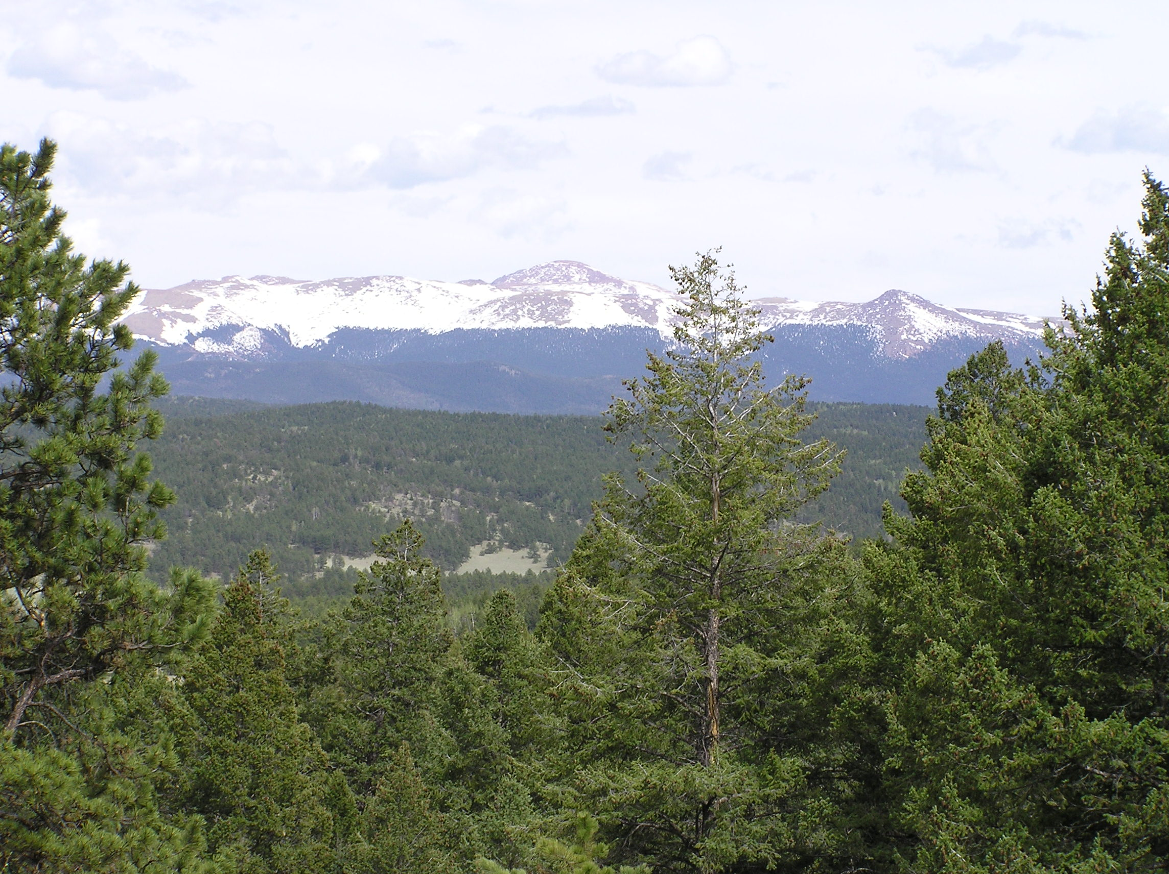Florissant Fossil Beds National Monument PA272547.jpg English: Location Florissant Fossil Beds National Monument Beneath a grassy