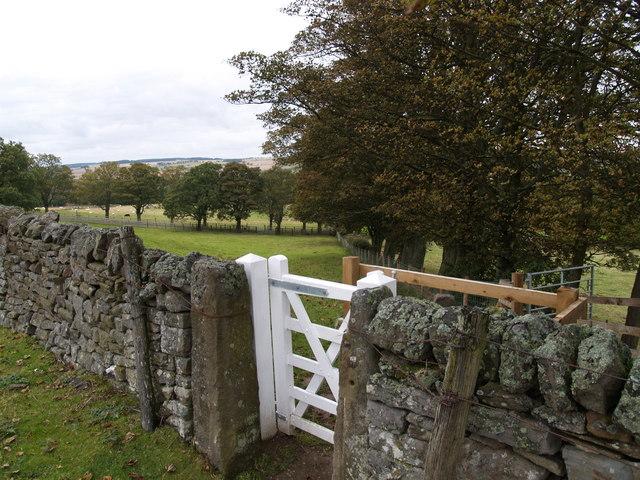 Footpath to Muggleswick - geograph.org.uk - 571702