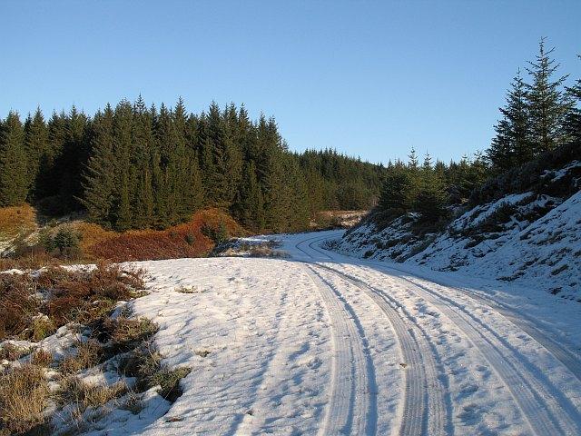 Forest road, Strath nan Lùb - geograph.org.uk - 1074980